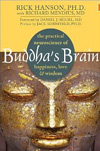 Buddha's Brain: The Practical Neuroscience of Happiness, Love, and Wisdom, Rick Hanson